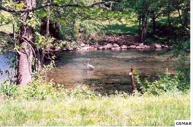 Lot 16 R Pigeon River Park Pigeon Forge, TN 37863